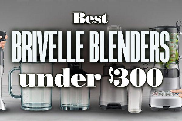 Best Brivelle Blenders Under $300